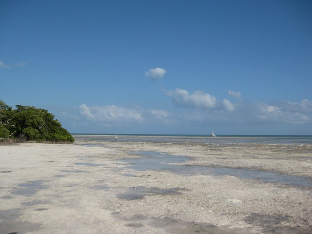 Beach at low tide near Caloosa Cove in the Florida Keys