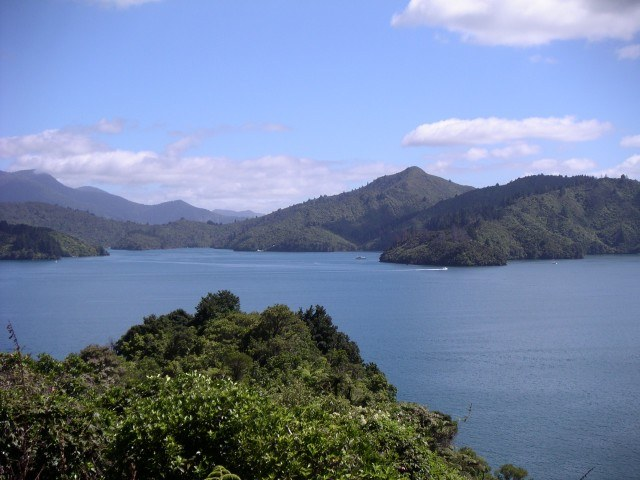 Marlborough Sounds New Zealand  city photos gallery : Travel Photo: Marlborough Sounds, New Zealand