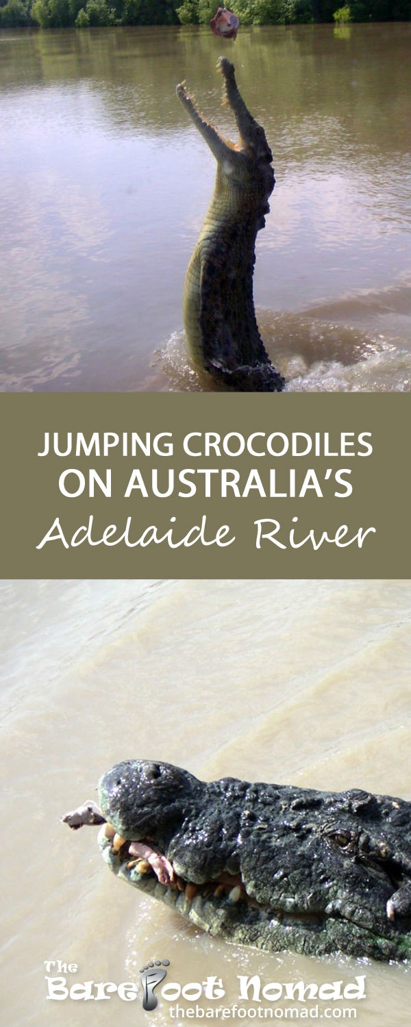 Jumping Crocodiles on Australias Adelaide River