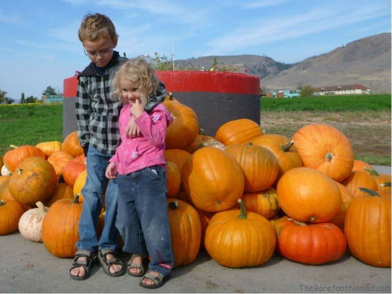 Posing by the Pumpkins Tranquille Farm Fres