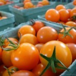 Cherry tomatoes Tranquille Farm Fresh Kamloops