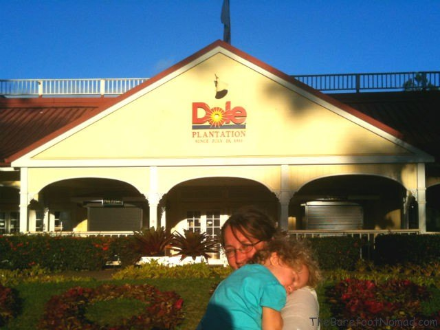 Outside the Dole Plantation Oahu Drive