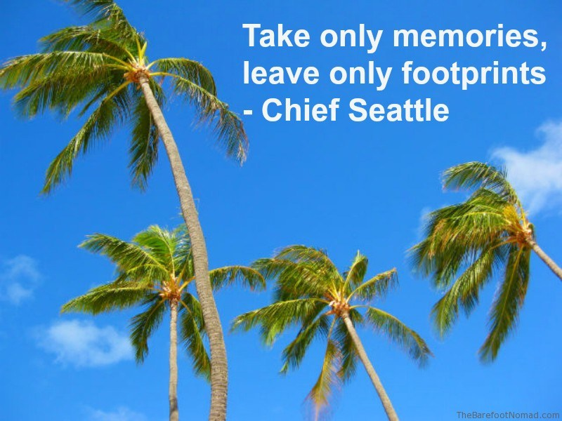 Chief seattle Palm Trees Swaying In The Breeze Kailua Beach Oahu Hawaii Travel Inspiration Quote