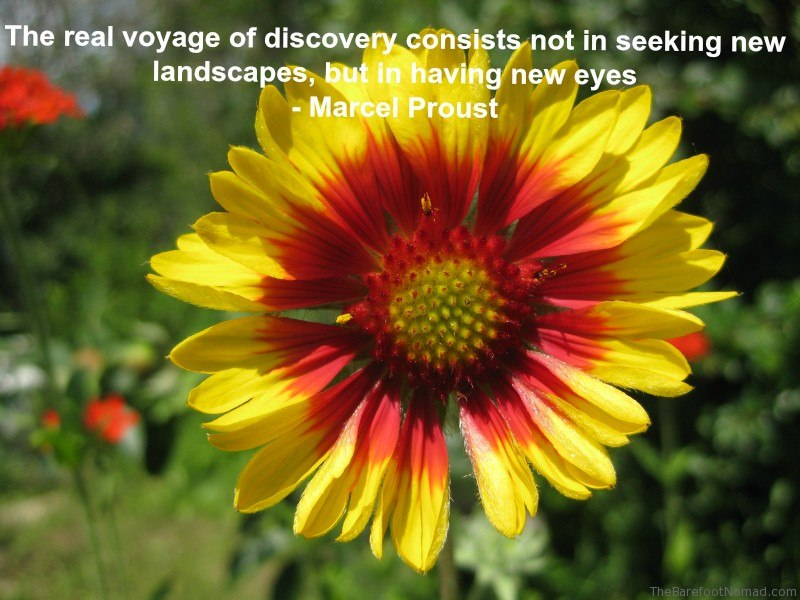 Proust Flower Travel Inspiration Quote