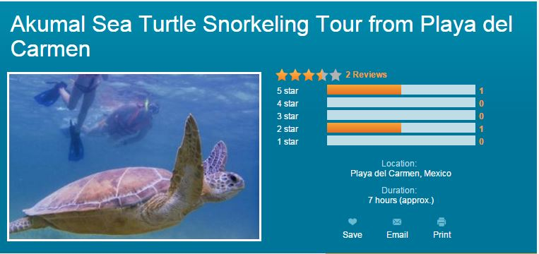Viator Akumal Sea Turtle Snorkeling Tour from Playa del Carmen