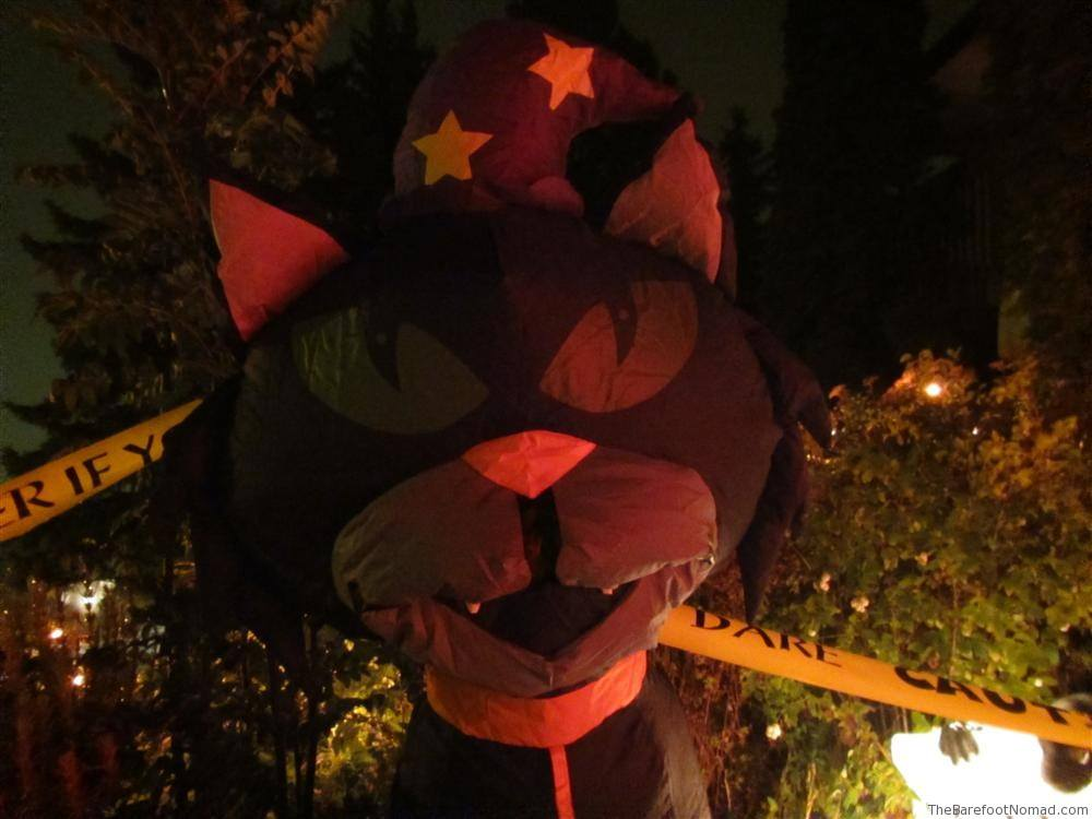 Low light Halloween Cat Canon D20 Review Photograph