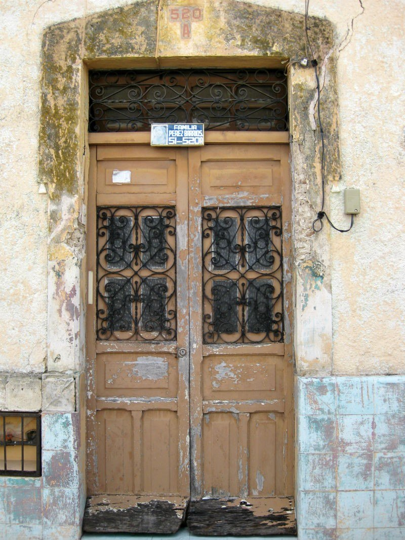 Merida Brown Door