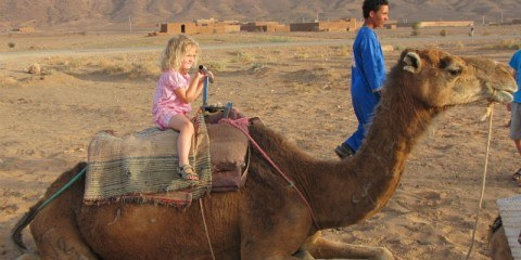 little girl on Camel morocco