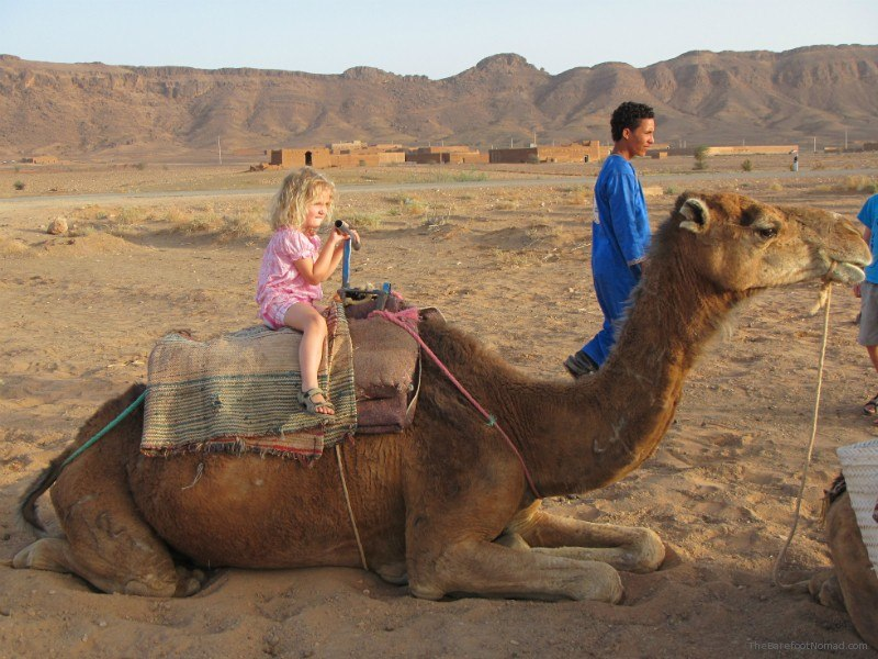 little girl on Camel morocco