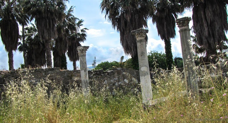 Lone columns in the long grass at the Kos Agora Greece