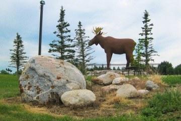Moose Jaw Mac the Moose Moose on Highway