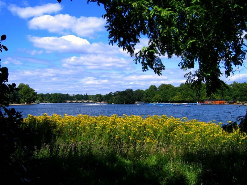 The Serpentine Lake in Hyde Park by UGArdener