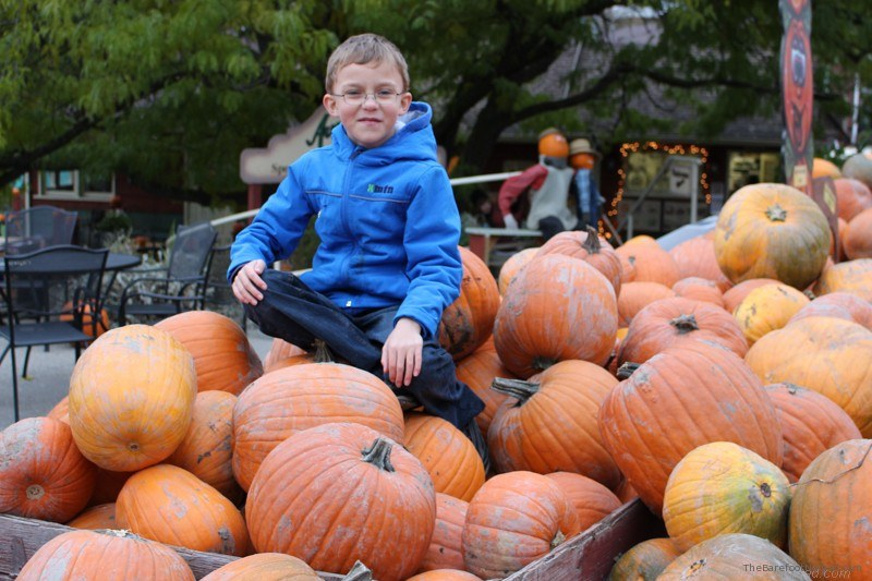 Cole on top of pumpkins