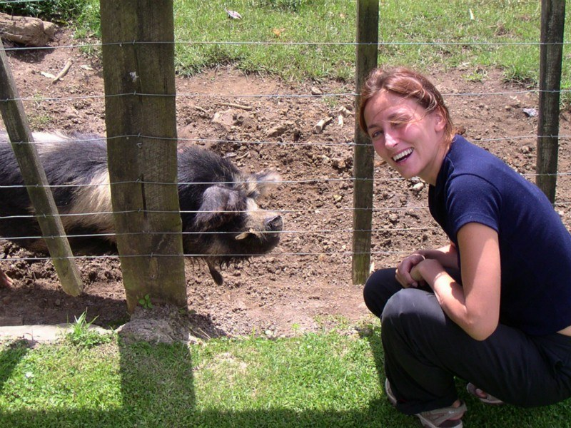 Micki and the Polynesian Pig