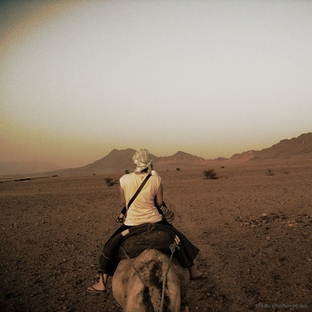 The long trek to our tent camp for the night Morocco Sahara Camel sunset
