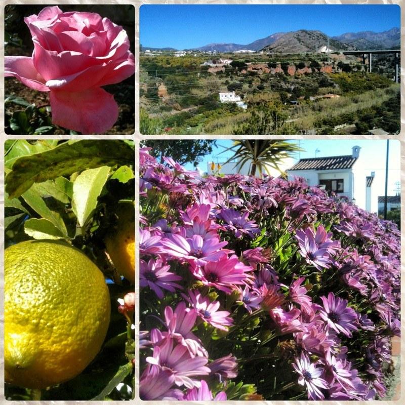 Life in Nerja, Spain