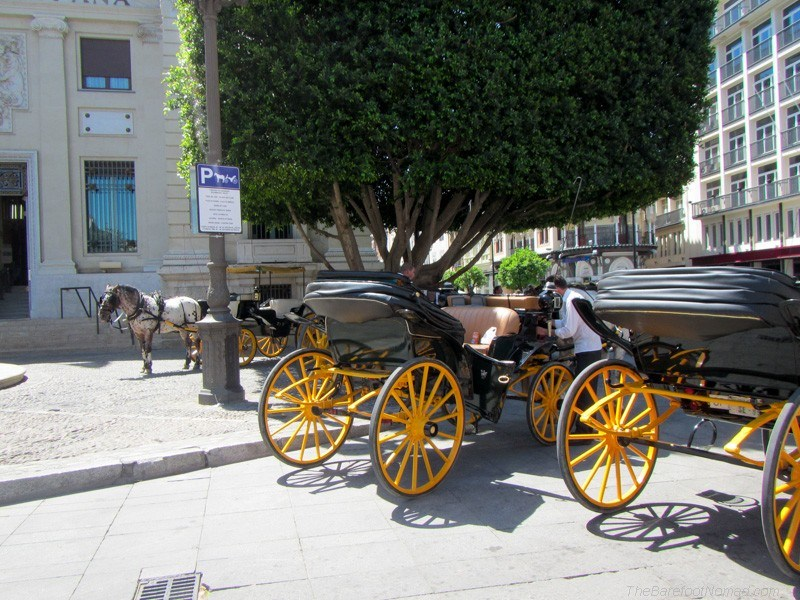 Horse and buggy Seville