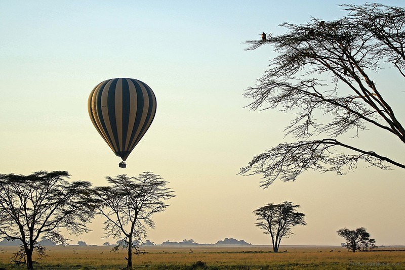Ballooning over the Serengeti Photo by Brian Hampson on Flickr