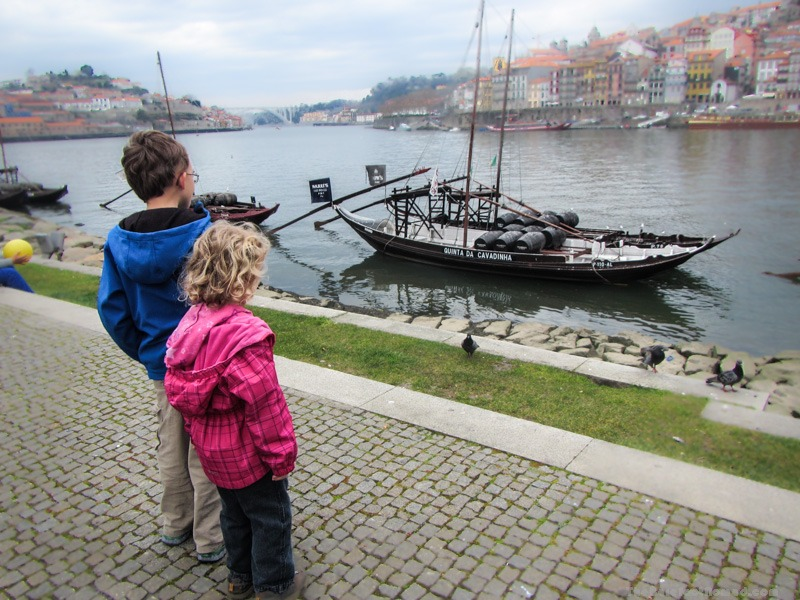 Looking out at the cruise boats from Av. Diogo Leite in Porto