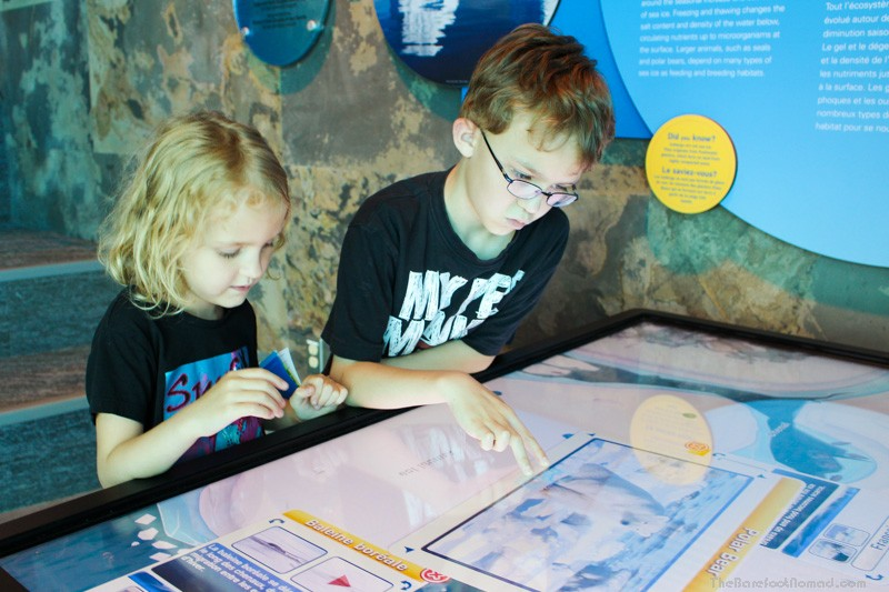 Learning about Polar Bears at the Interpretive Centre at the Winnipeg Assiniboine Park Zoo