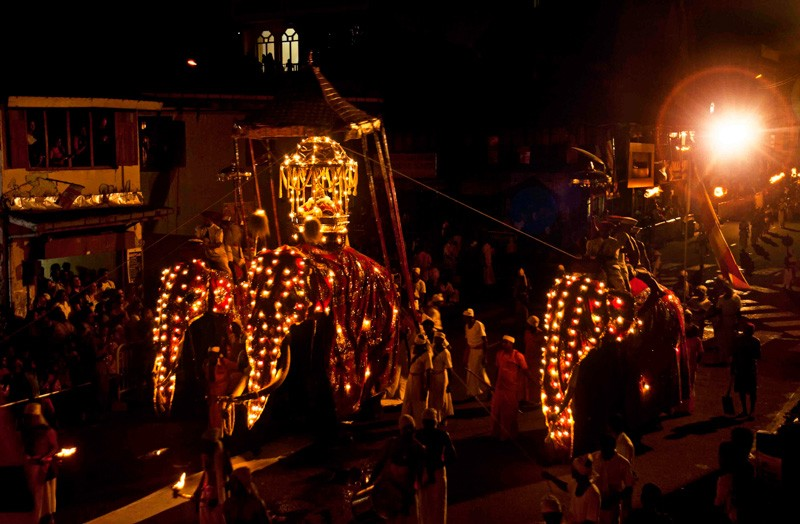 Sri Lank Esala Perahera elephant procession