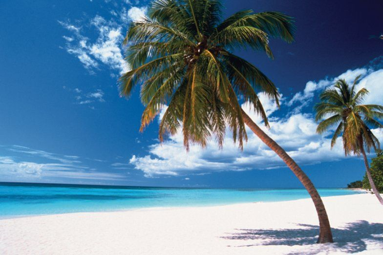 The Dominican Republics 10 Best Beaches