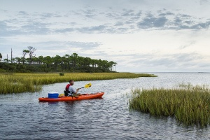 St Joseph Bay Gulf County Florida Kayaking
