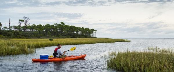 St Joseph Bay Gulf County Florida Kayaking