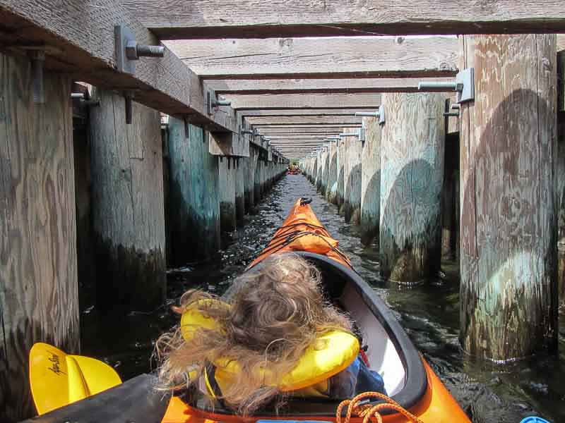 Kayaking with the kids with Hoodoo Adventures Penticton