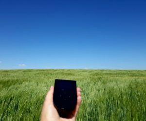 Tep Wireless in a wheatfield in Saskatchewan