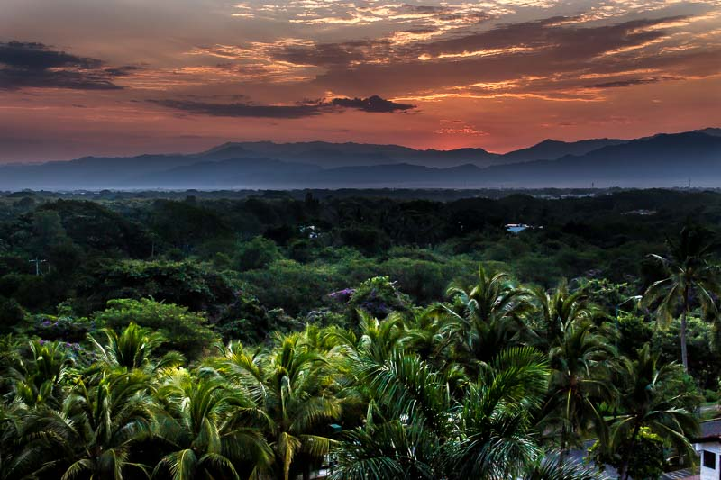Lush tropical forest view from the back of the Marival Residences Luxury Resort