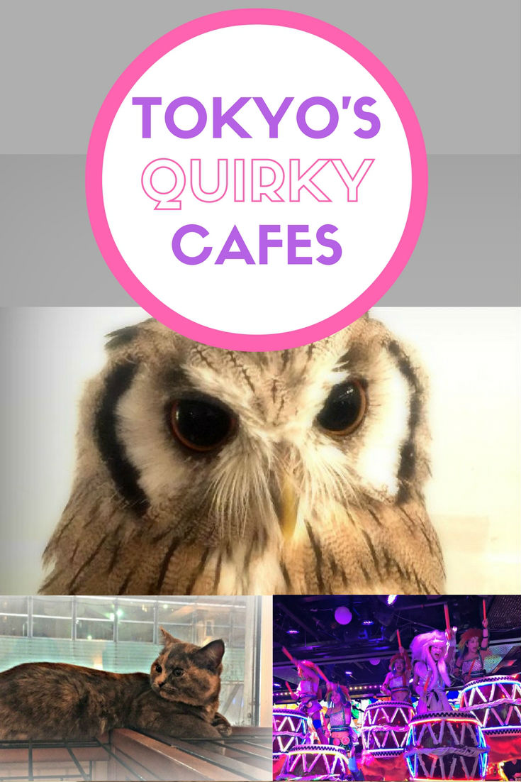 Tokyos quirky themed cafes