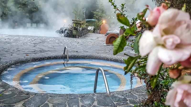 Spa rose in front of hot pool at Termas Papallacta spa hot pool