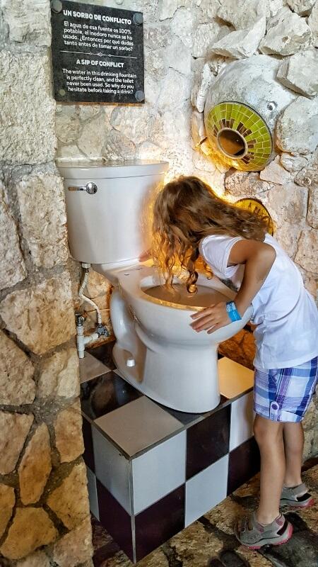 Xenses toilet water fountain