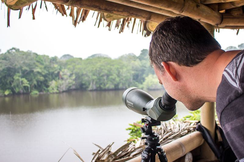 La Selva Lodge bird watching in the jungle