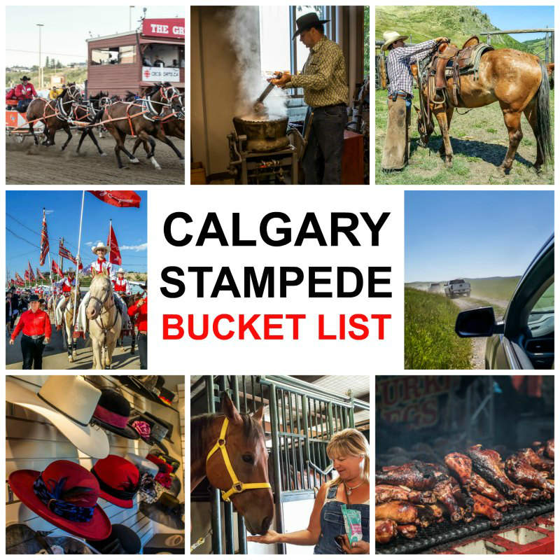 21 Incredible Things To Do at the Calgary Stampede Bucket List