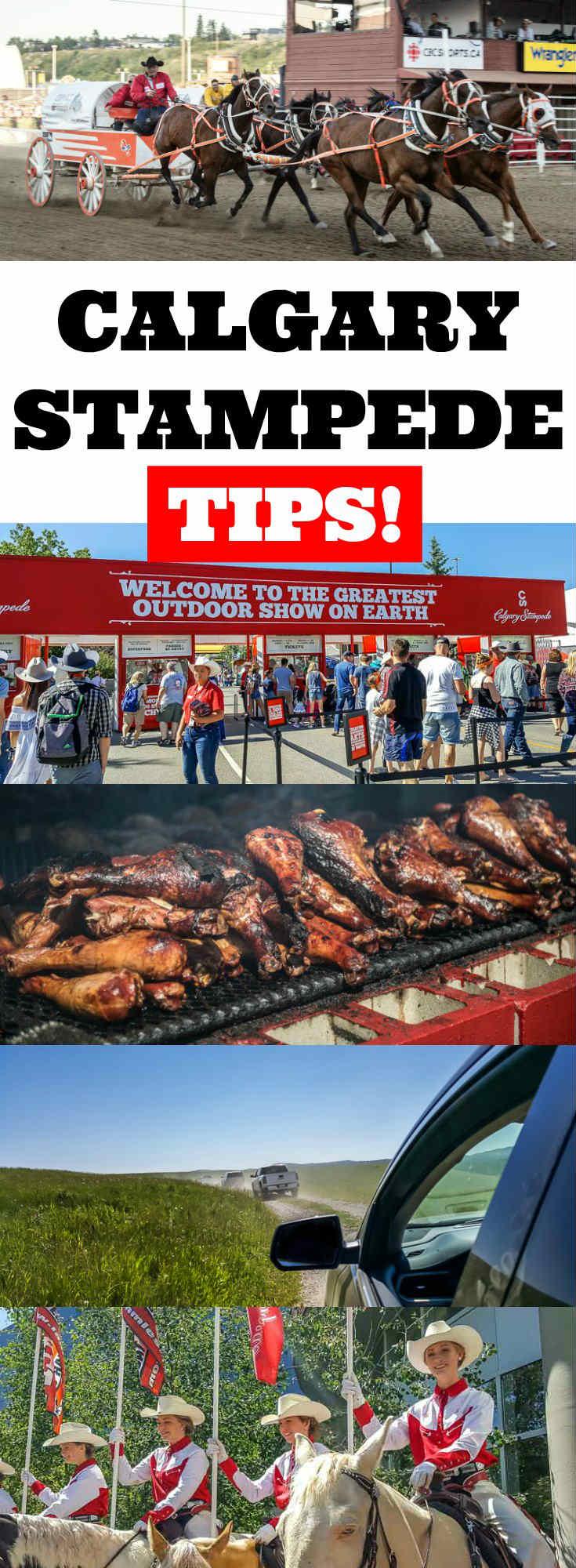 Calgary Stampede Tips   Calgary Stampede things to do   Calgary Stampede Bucket List