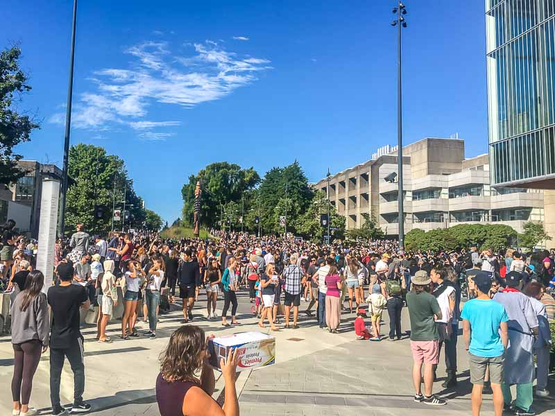 Viewing the eclipse at UBC pinhole projector