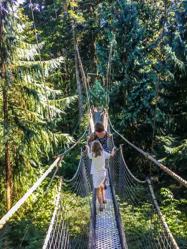 Greenheart TreeWalk at UBC Botanical Gardens