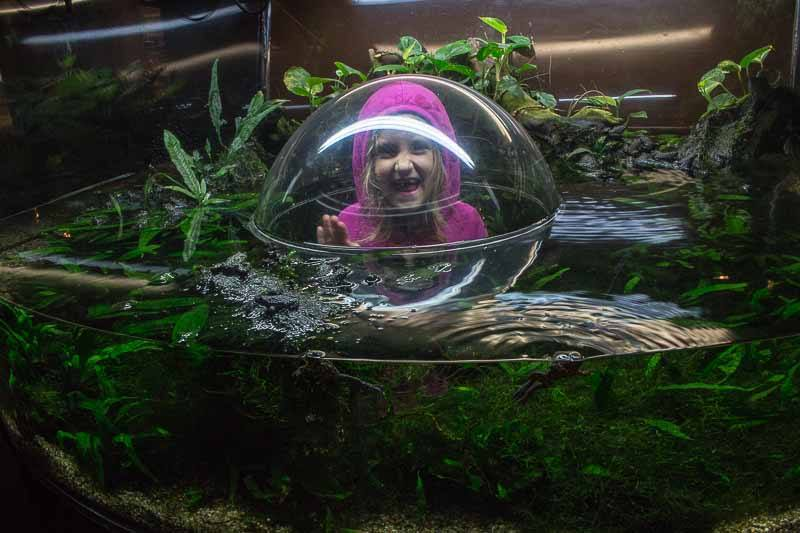 Vancouver Aquarium kids fun