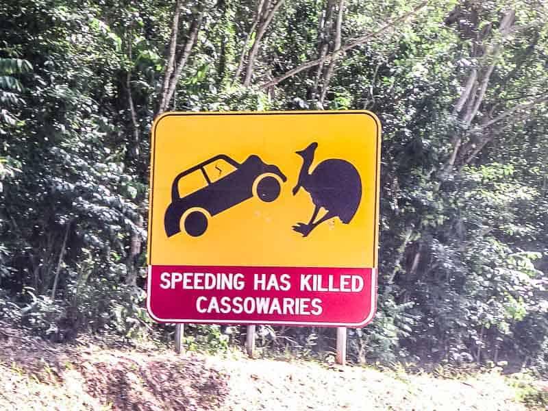 cassowary sign in Australia
