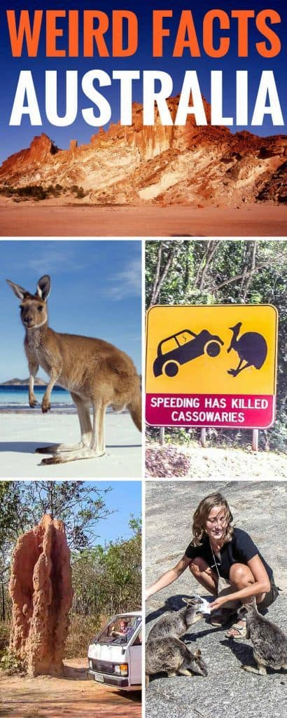 Weird Australia Facts. There's no getting around the fact that Australia is a weird, but wonderful place. From termite mounds as big as a building, to animals that defy description, we tell you all that's weird and cool about Australia. Australia Facts | Australia Facts for Kids | Cool Australia Facts | Fun Australia Facts | Australia Travel #Australia #australianproblems #aussie #Australiakids