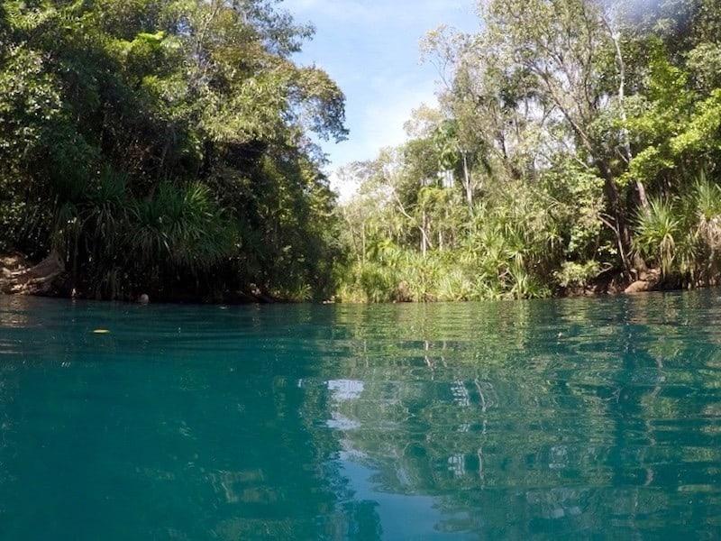 Beautiful Waters of Berry Springs