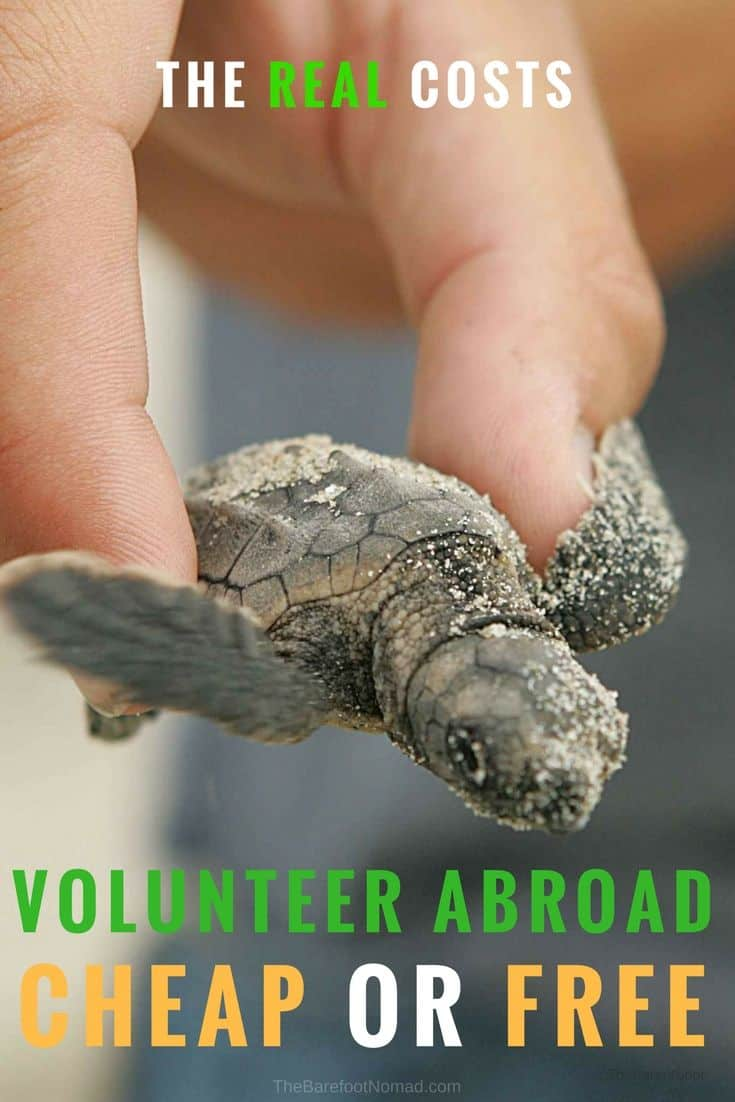Is it possible to volunteer abroad and travel the world for free? Yes it is, but many work programs have real costs, and our volunteer expert tells you how to budget your money in volunteer destinations like Africa or Thailand or Costa Rica or South America. These tips can help with the real costs of volunteer programs like teaching English or conservation projects with turtles or elephants in Thailand.