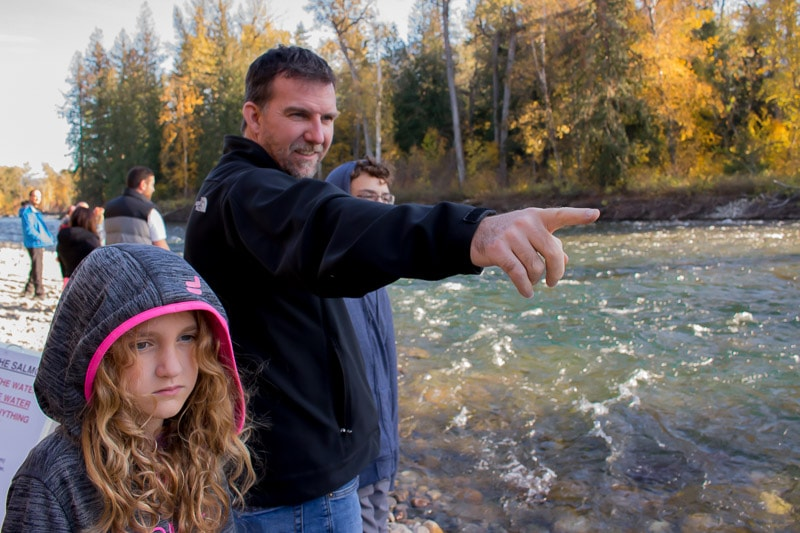 Dad and daughter watching salmon at the Adams River Sockeye Salmon Run at Tsutswecw Provincial Park