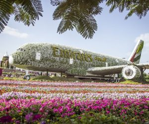 Miracle Garden Dubai