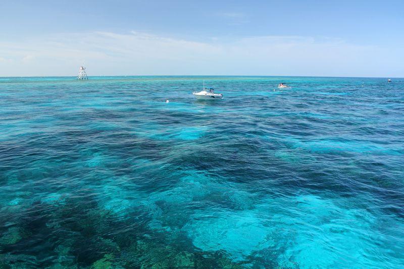 Molasses Reef Key Largo John Pennekamp Coral Reef State Park