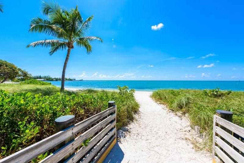 Sombrero Beach Palm Trees Florida Keys Marathon DP Best Beaches in the Florida Keys
