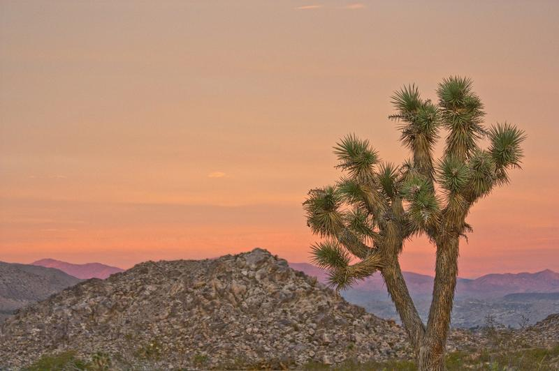Sunset in Joshua Tree, a fantastic weekend getaway from LA California