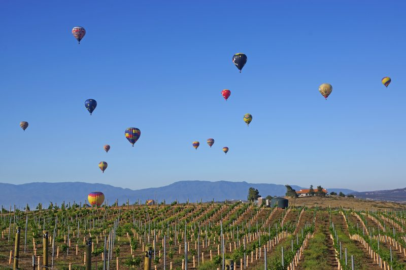 Temecula Valley California Balloon and Wine Festival on a weekend trip from Los Angeles